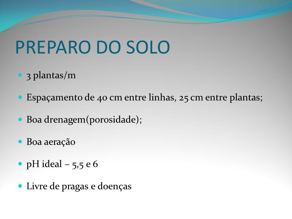 PREPARO DO SOLO 3 plantas/m Espaçamento de 40 cm entre linhas, 25 cm entre plantas; Boa drenagem(porosidade); Boa aeração pH ideal – 5,5 e 6 Livre de