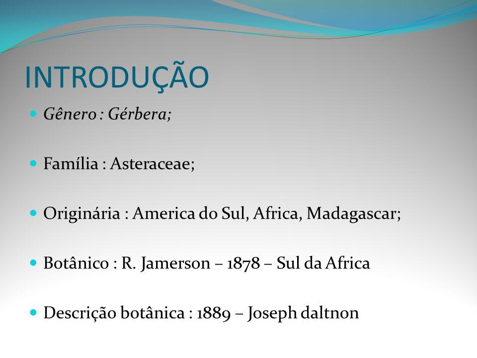 INTRODUÇÃO Gênero : Gérbera; Família : Asteraceae; Originária : America do Sul, Africa, Madagascar; Botânico : R. Jamerson – 1878 – Sul da Africa Desc