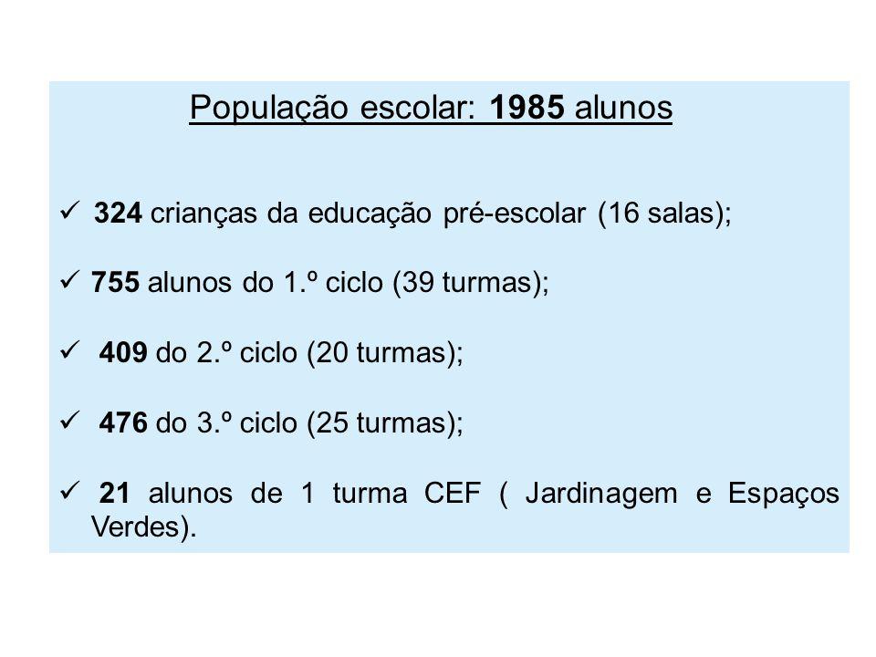 População escolar: 1985 alunos 324 crianças da educação pré-escolar (16 salas); 755 alunos do 1.º ciclo (39 turmas); 409 do 2.º ciclo (20 turmas); 476 do 3.º ciclo (25 turmas); 21 alunos de 1 turma CEF ( Jardinagem e Espaços Verdes).