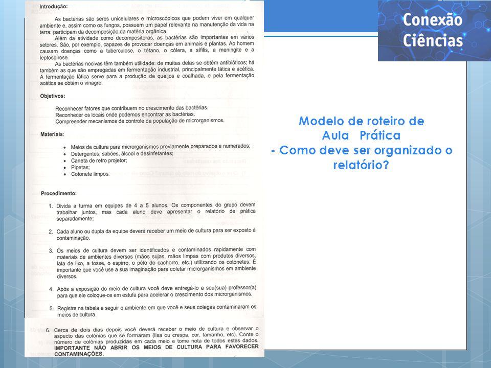 Modelo de roteiro de Aula Prática - Como deve ser organizado o relatório?