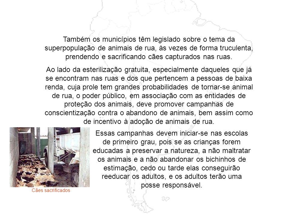 Em São Paulo, dentre outras, atuam a ANIMA ANIMA, a Animais do Quintal de São Francisco, AILA a AILA – Aliança Internacional do Animal, a Associação P