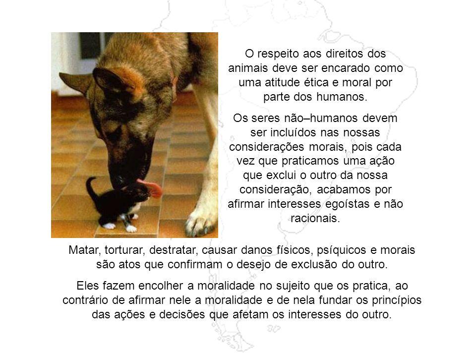 Também os municípios têm legislado sobre o tema da superpopulação de animais de rua, às vezes de forma truculenta, prendendo e sacrificando cães captu