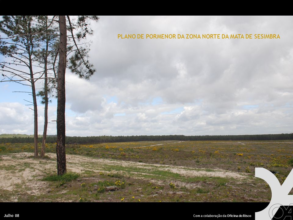 Julho 08 PLANO DE PORMENOR DA ZONA NORTE DA MATA DE SESIMBRA Com a colaboração da Oficina do Risco