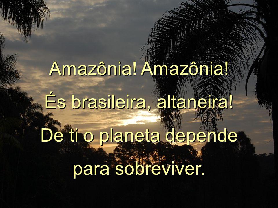Amazônia.És brasileira, altaneira. De ti o planeta depende para sobreviver.