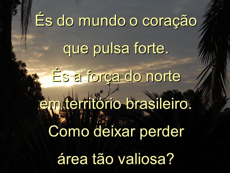Amazônia! És brasileira, altaneira! De ti o planeta depende para sobreviver. Amazônia! És brasileira, altaneira! De ti o planeta depende para sobreviv