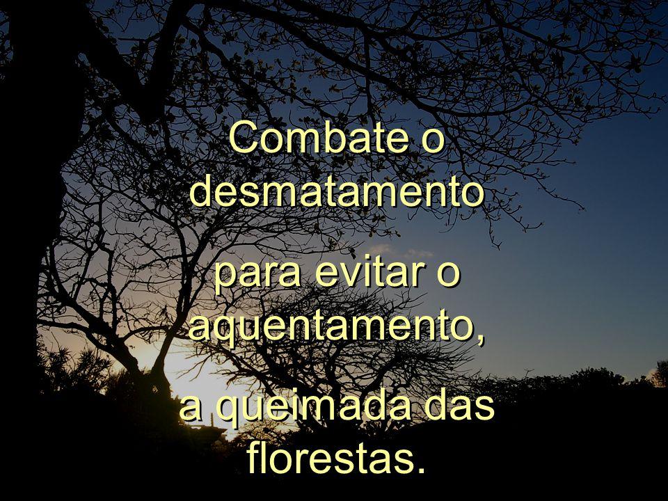 Procura vigiar o que é nosso, nossas matas, os verdes do nosso Brasil. Procura vigiar o que é nosso, nossas matas, os verdes do nosso Brasil.