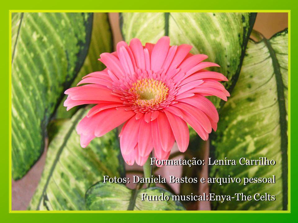 sentir a força de seu amor que faz a vida florir no jardim da minha existência.