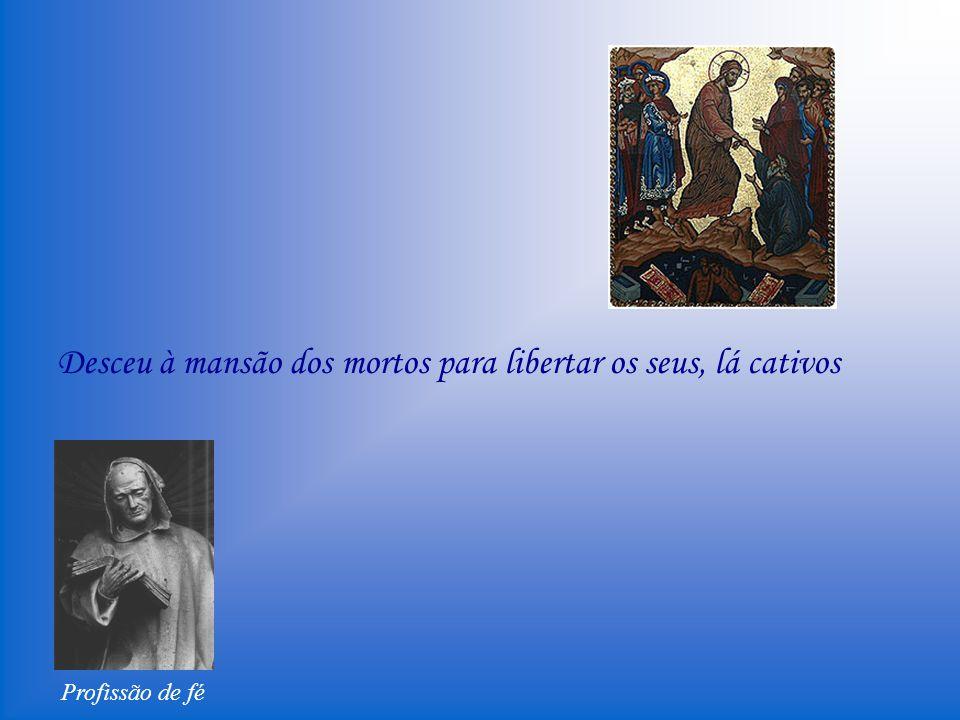 Profissão de fé Creio que o mesmo Filho de Deus foi preso invejosamente pelos judeus, injuriosamente tratado, injustamente atado, cuspido, flagelado, morto, sepultado