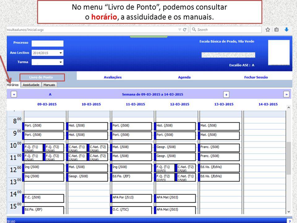 No separador ASSIDUIDADE podemos analisar as colunas que indicam a totalidade dos diferentes tipos de faltas: