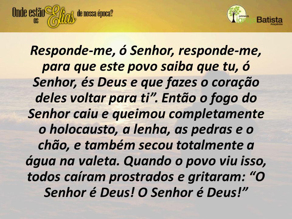 """Responde-me, ó Senhor, responde-me, para que este povo saiba que tu, ó Senhor, és Deus e que fazes o coração deles voltar para ti"""". Então o fogo do Se"""
