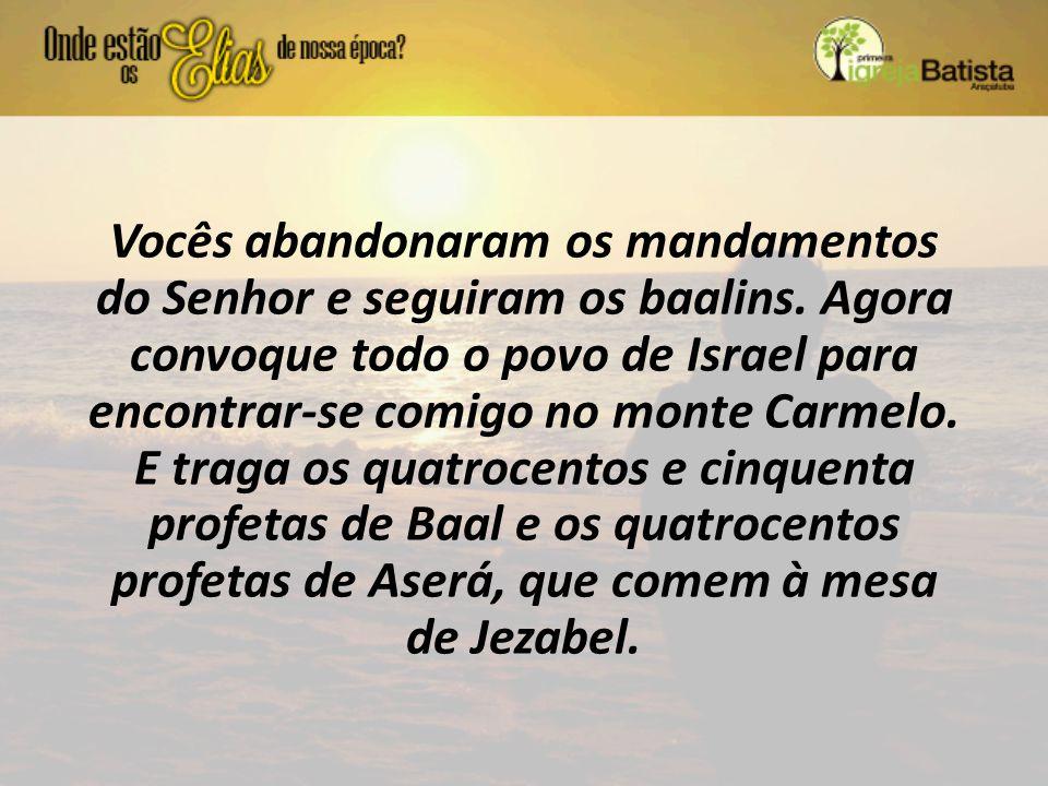 Vocês abandonaram os mandamentos do Senhor e seguiram os baalins. Agora convoque todo o povo de Israel para encontrar-se comigo no monte Carmelo. E tr