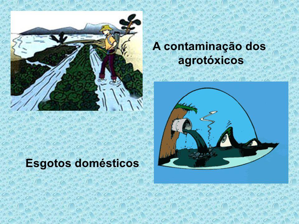 A contaminação dos agrotóxicos Esgotos domésticos