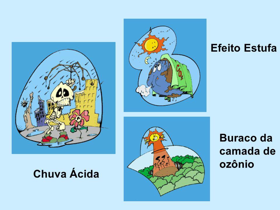Chuva Ácida Efeito Estufa Buraco da camada de ozônio