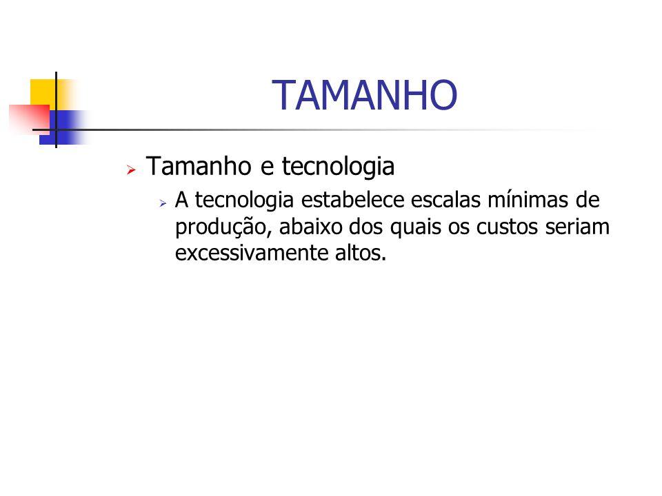TAMANHO  Tamanho e tecnologia  A tecnologia estabelece escalas mínimas de produção, abaixo dos quais os custos seriam excessivamente altos.
