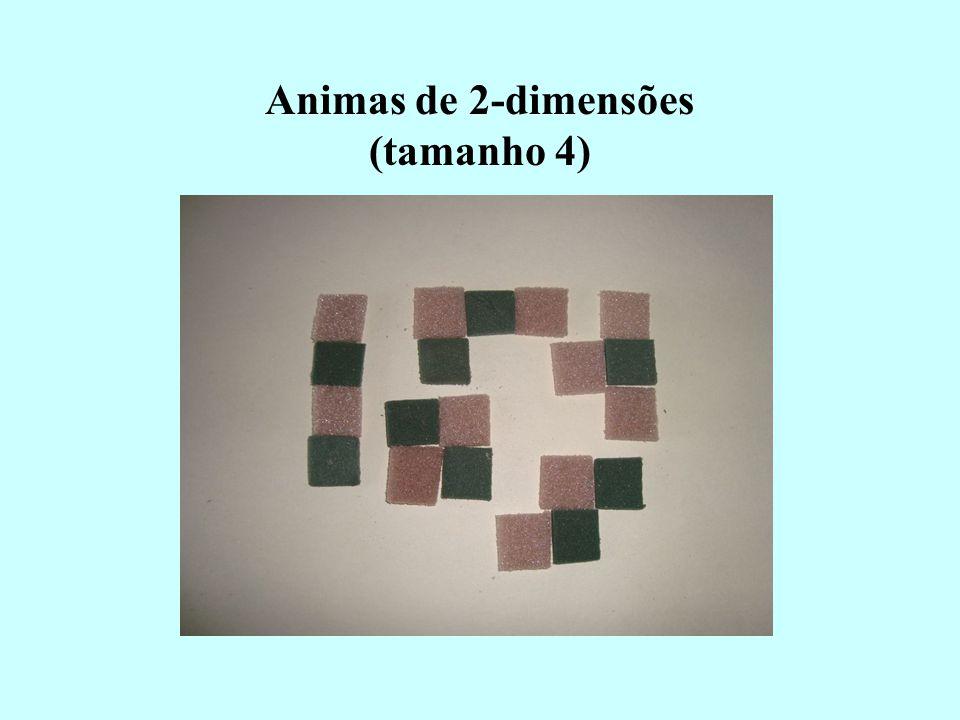 Animas de 2-dimensões (tamanho 4)