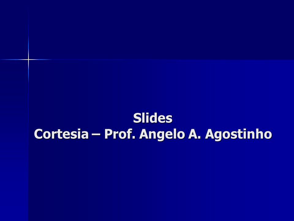 Slides Cortesia – Prof. Angelo A. Agostinho