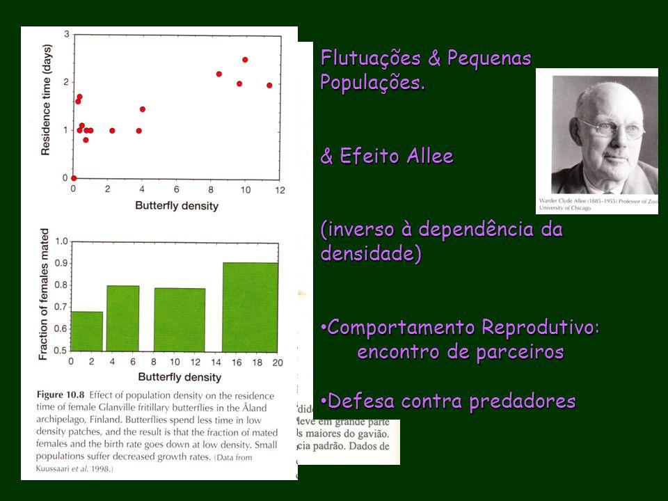Flutuações & Pequenas Populações. & Efeito Allee (inverso à dependência da densidade) Comportamento Reprodutivo: Comportamento Reprodutivo: encontro d