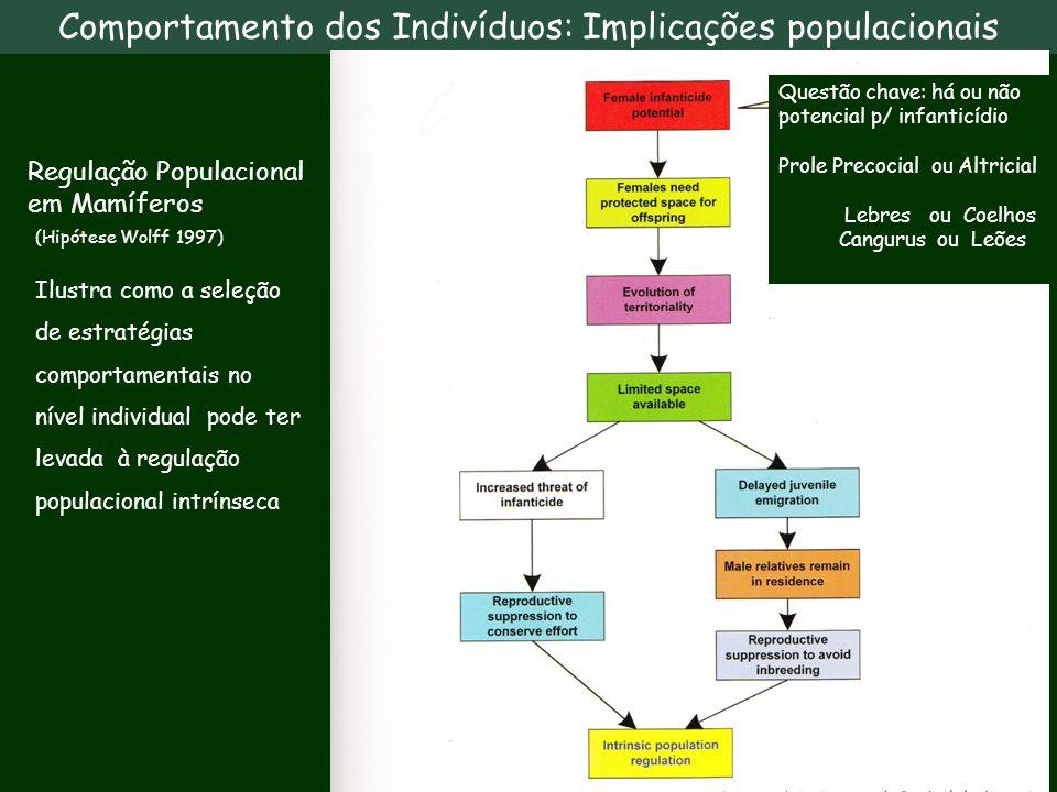 Comportamento dos Indivíduos: Implicações populacionais Ilustra como a seleção de estratégias comportamentais no nível individual pode ter levada à re