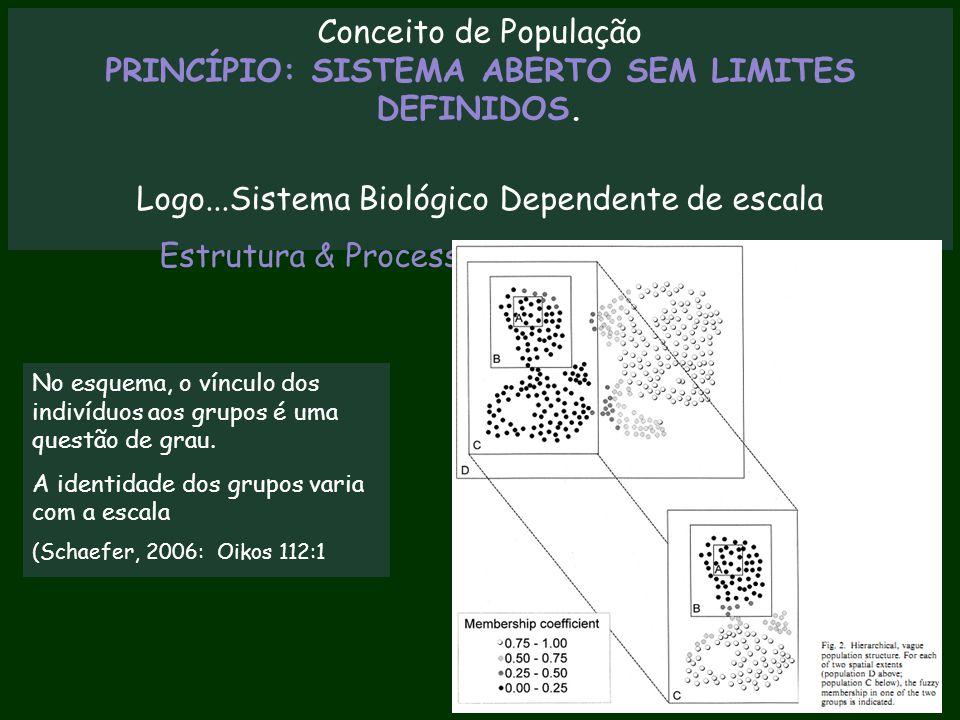 Conceito de População PRINCÍPIO: SISTEMA ABERTO SEM LIMITES DEFINIDOS. Logo...Sistema Biológico Dependente de escala Estrutura & Processos Dependem da