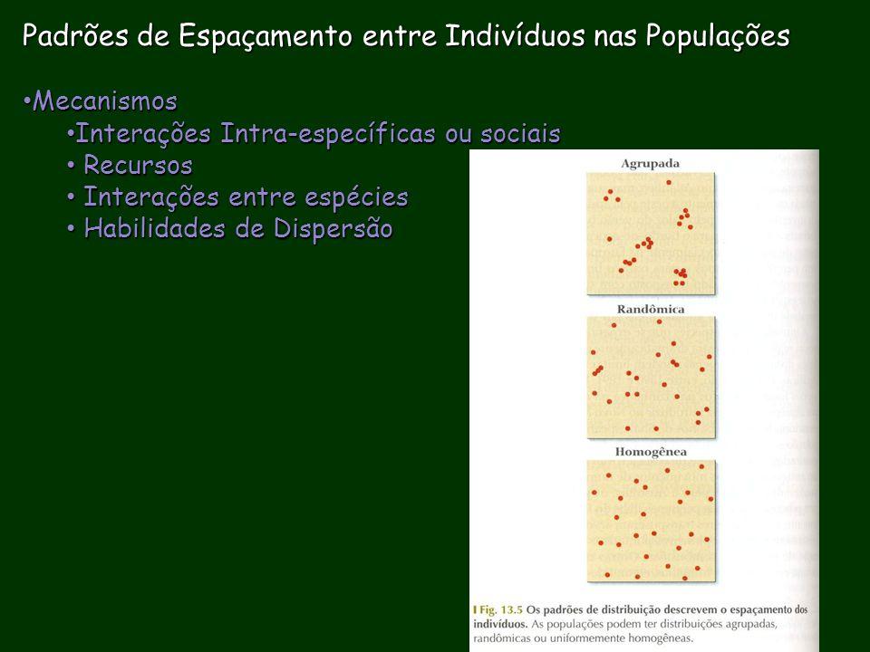 Padrões de Espaçamento entre Indivíduos nas Populações Mecanismos Mecanismos Interações Intra-específicas ou sociais Interações Intra-específicas ou s