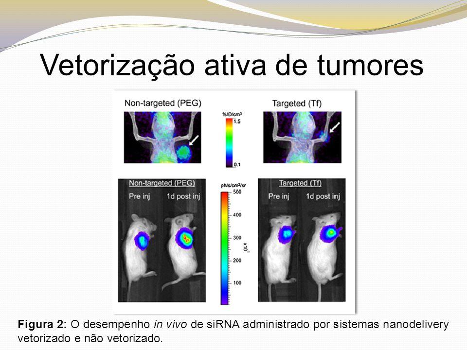Vetorização ativa de tumores Figura 2: O desempenho in vivo de siRNA administrado por sistemas nanodelivery vetorizado e não vetorizado.
