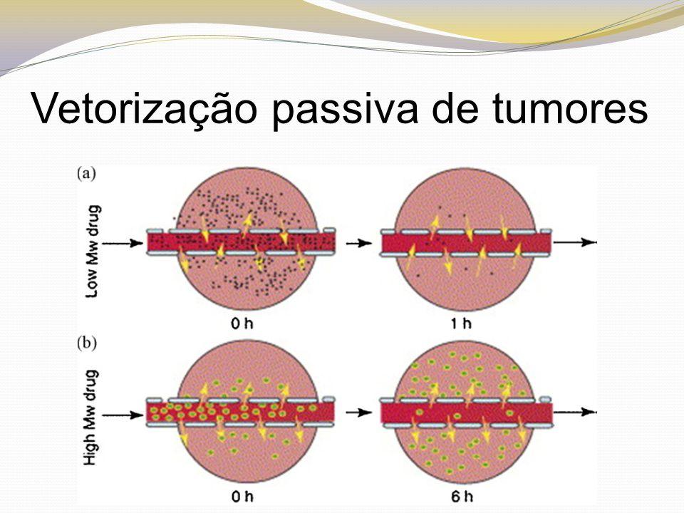 (A) Fármacos muito pequenos, com peso molecular pequeno, podem difundir-se, através da vascularização, para dentro do tumor, mas também podem difundir-se de volta para fora do tumor, o que permite a remoção destes compostos do espaço tumoral.