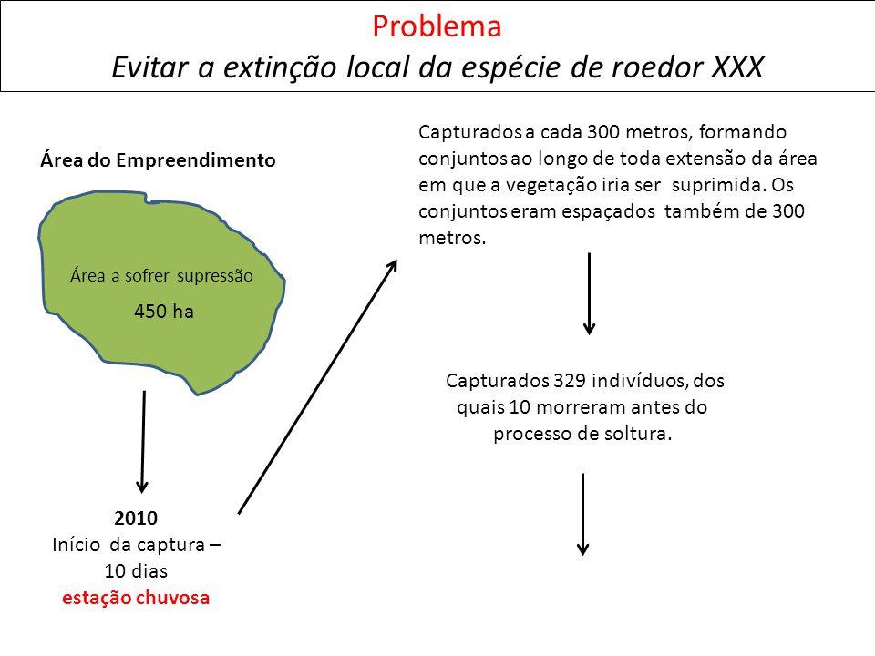 2010 Início da captura – 10 dias estação chuvosa Problema Evitar a extinção local da espécie de roedor XXX 450 ha Área a sofrer supressão Área do Empr