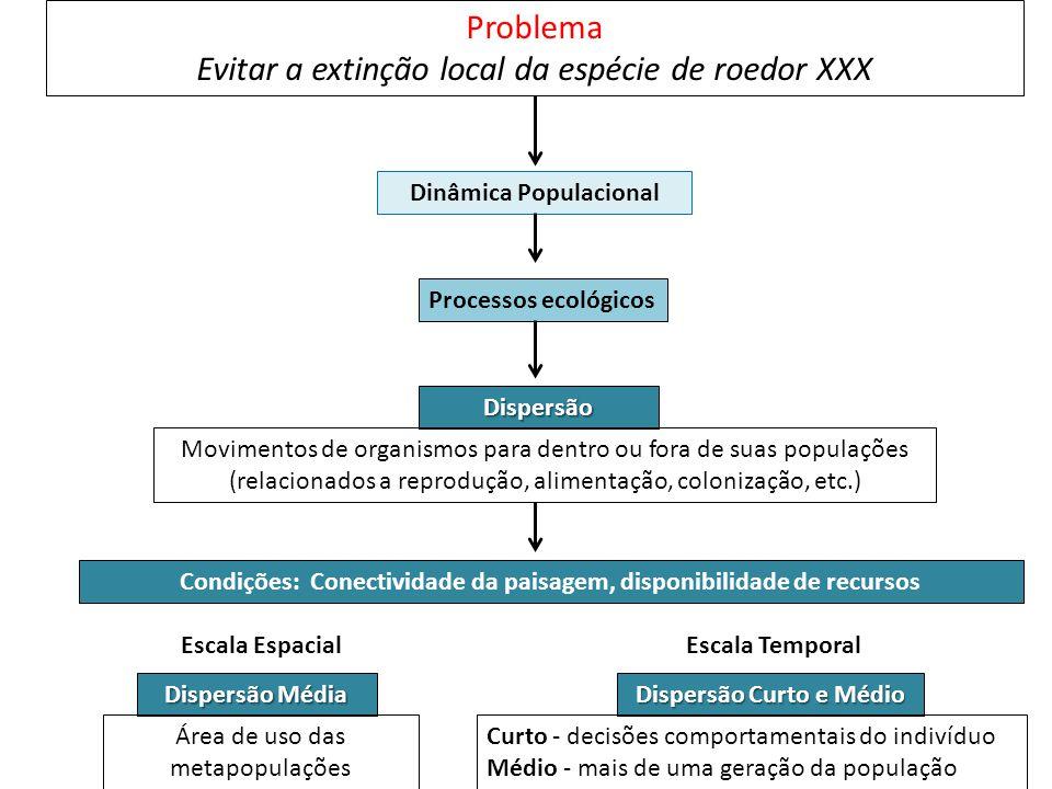 Problema Evitar a extinção local da espécie de roedor XXX Dinâmica Populacional Processos ecológicos Dispersão Condições: Conectividade da paisagem, d