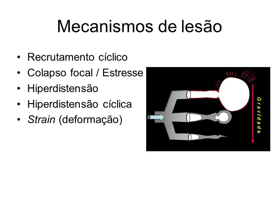 Mecanismos de lesão Recrutamento cíclico Colapso focal / Estresse Hiperdistensão Hiperdistensão cíclica Strain (deformação)