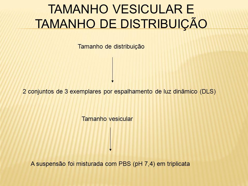 TAMANHO VESICULAR E TAMANHO DE DISTRIBUIÇÃO 2 conjuntos de 3 exemplares por espalhamento de luz dinâmico (DLS) Tamanho de distribuição Tamanho vesicular A suspensão foi misturada com PBS (pH 7,4) em triplicata