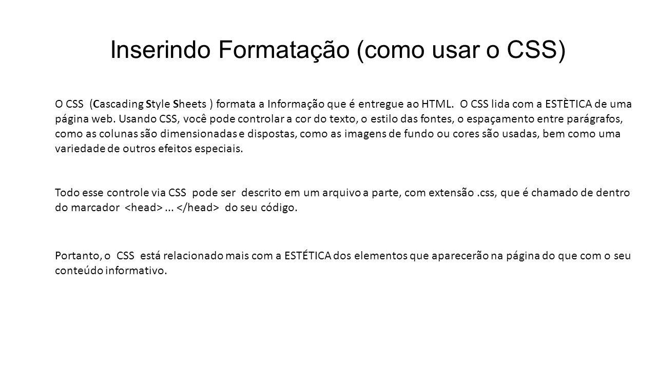 Inserindo Formatação (como usar o CSS) O CSS (Cascading Style Sheets ) formata a Informação que é entregue ao HTML. O CSS lida com a ESTÈTICA de uma p