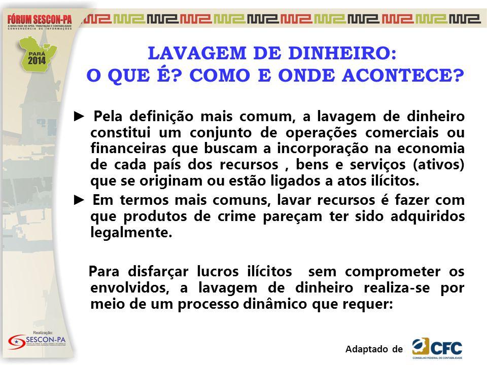 Muito Agradecida! Cristina Amélia Fontes Langoni cristina@fonteslangoni.com.br