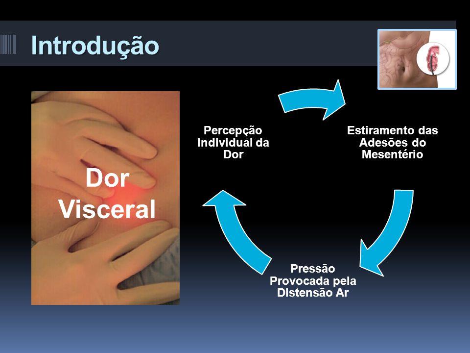 Introdução Estiramento das Adesões do Mesentério Pressão Provocada pela Distensão Ar Percepção Individual da Dor Dor Visceral