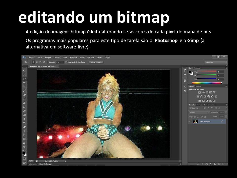 editando um bitmap A edição de imagens bitmap é feita alterando-se as cores de cada pixel do mapa de bits Os programas mais populares para este tipo d