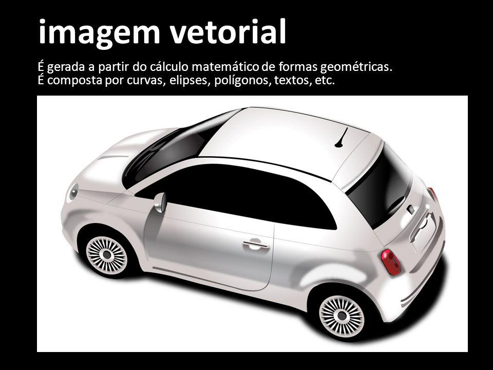 imagem vetorial É gerada a partir do cálculo matemático de formas geométricas. É composta por curvas, elipses, polígonos, textos, etc.
