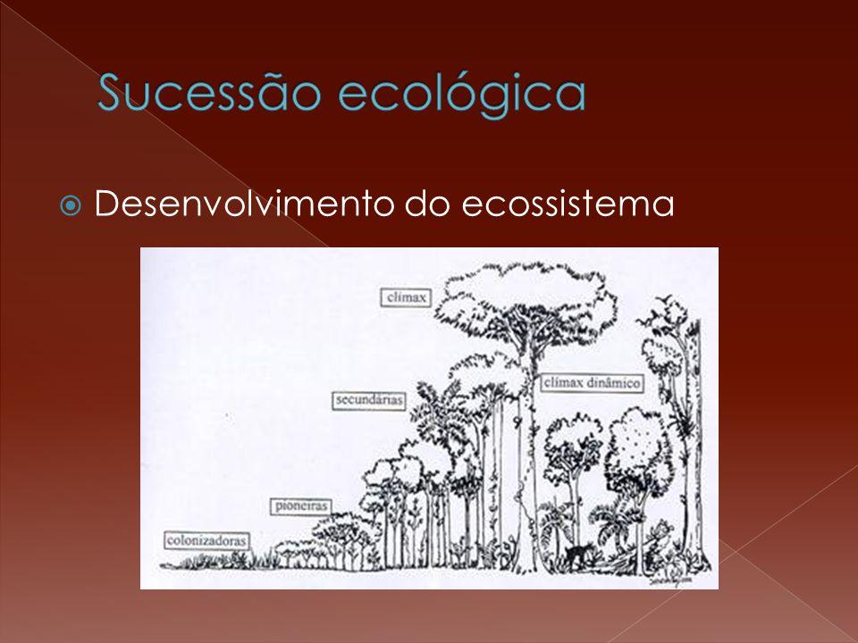  Desenvolvimento do ecossistema