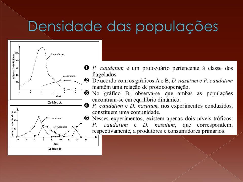 P >> R início P > R meio P = R fim