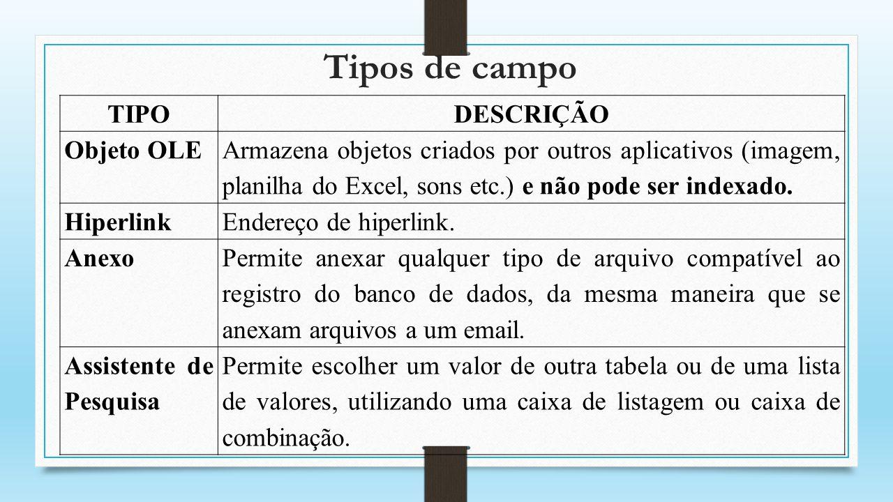 Tipos de campo TIPODESCRIÇÃO Objeto OLE Armazena objetos criados por outros aplicativos (imagem, planilha do Excel, sons etc.) e não pode ser indexado