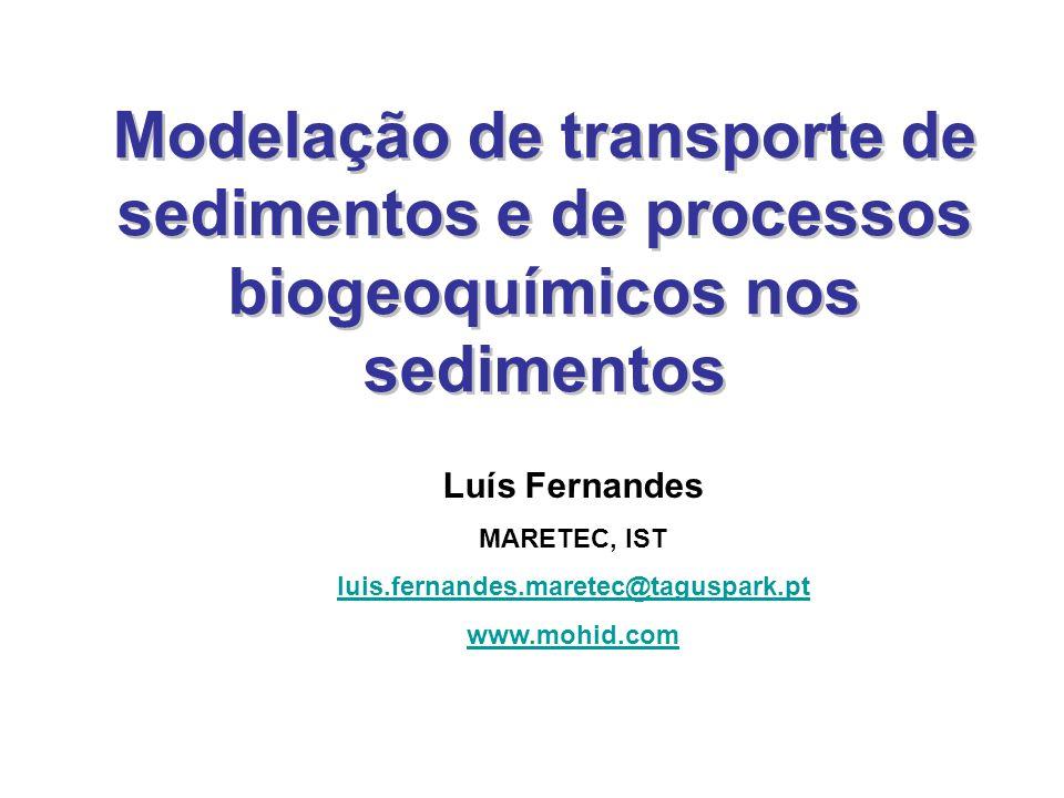 Modelação de transporte de sedimentos e de processos biogeoquímicos nos sedimentos Luís Fernandes MARETEC, IST luis.fernandes.maretec@taguspark.pt www