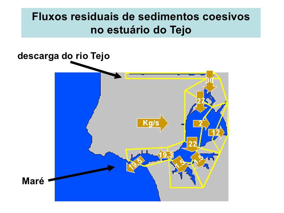 Fluxos residuais de sedimentos coesivos no estuário do Tejo descarga do rio Tejo Maré