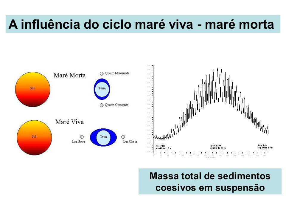 A influência do ciclo maré viva - maré morta Massa total de sedimentos coesivos em suspensão