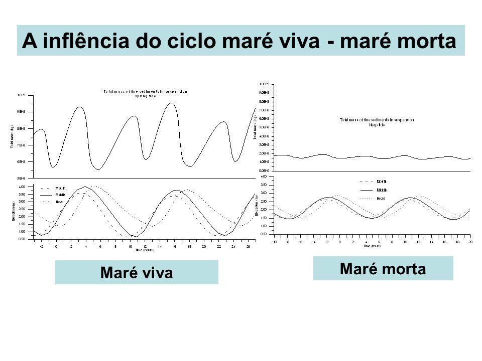 Maré viva Maré morta A inflência do ciclo maré viva - maré morta