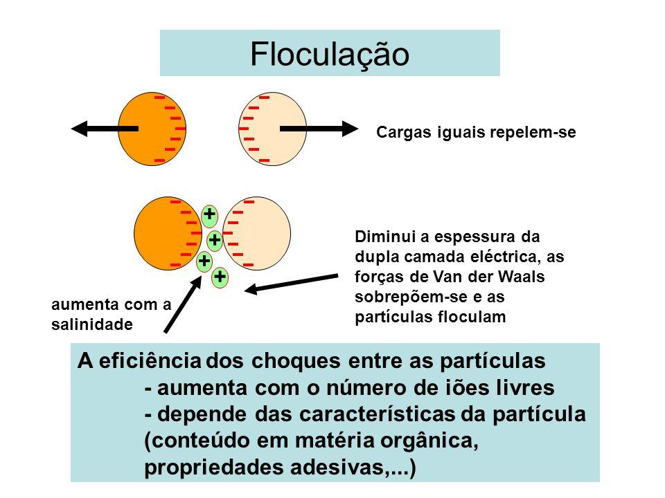 Floculação A eficiência dos choques entre as partículas - aumenta com o número de iões livres - depende das características da partícula (conteúdo em