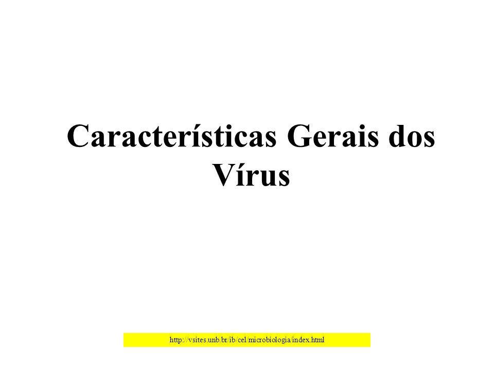 CORONAVIRUS-Doença respiratória (Bronquite infecciosa) Fonte: paulo.fot.br/cesumar/Farm.%20ENS.%20Vírus.ppt