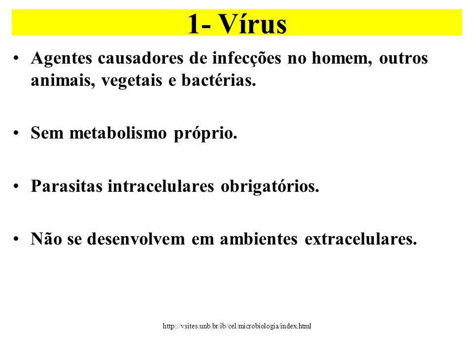 Agentes causadores de infecções no homem, outros animais, vegetais e bactérias.