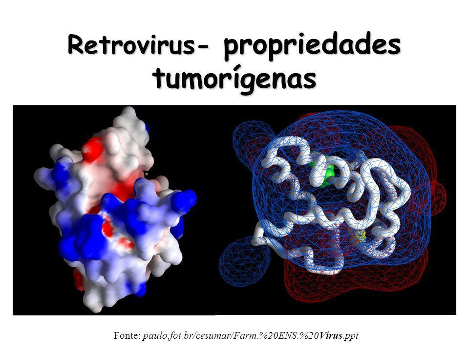 Retrovirus- propriedades tumorígenas Fonte: paulo.fot.br/cesumar/Farm.%20ENS.%20Vírus.ppt