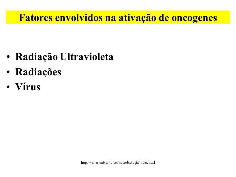 Radiação Ultravioleta Radiações V í rus Fatores envolvidos na ativação de oncogenes http://vsites.unb.br/ib/cel/microbiologia/index.html