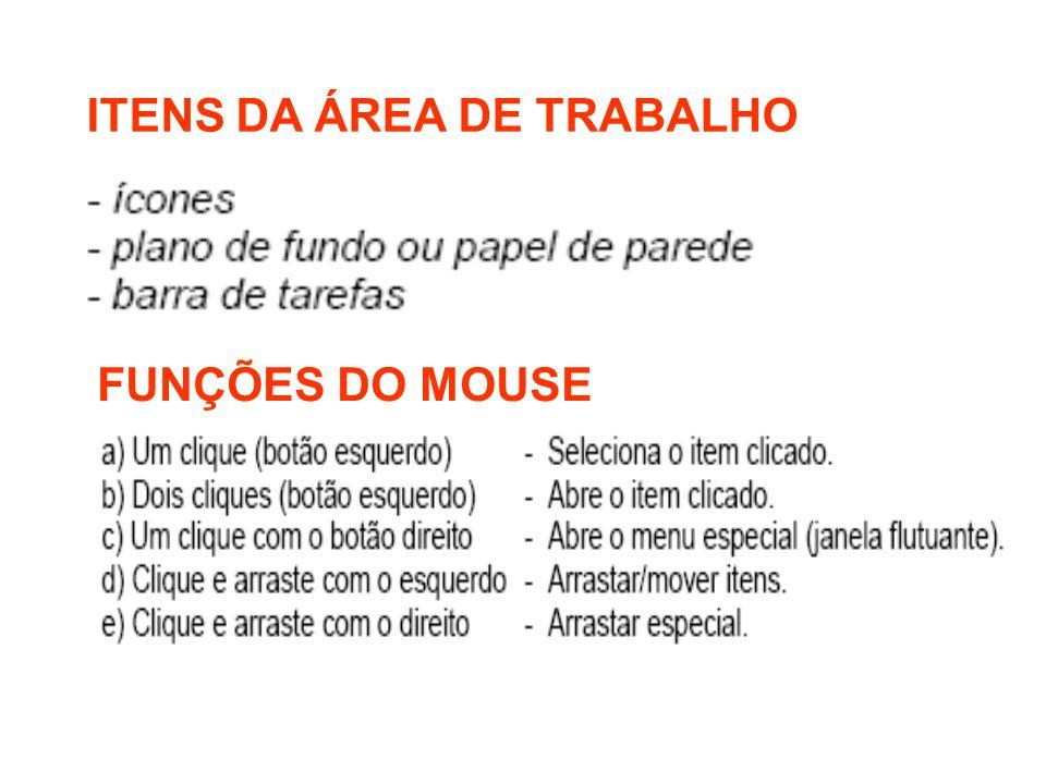 ITENS DA ÁREA DE TRABALHO FUNÇÕES DO MOUSE