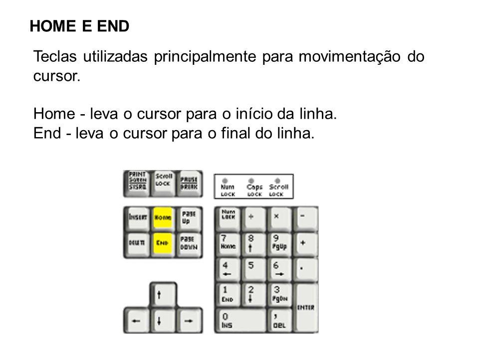 HOME E END Teclas utilizadas principalmente para movimentação do cursor. Home - leva o cursor para o início da linha. End - leva o cursor para o final