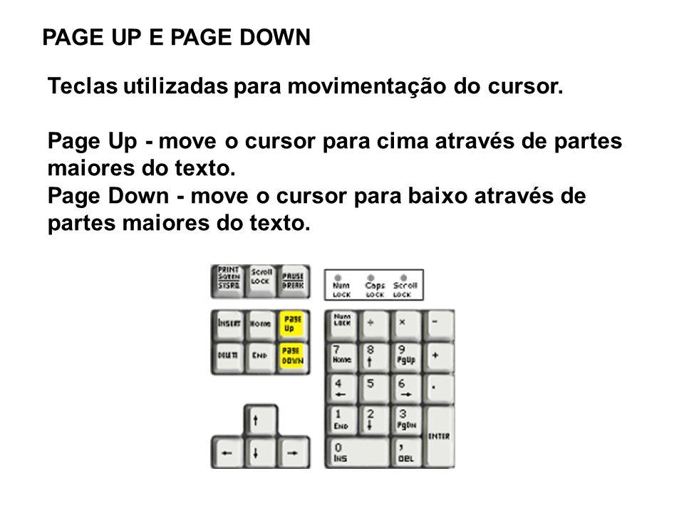 PAGE UP E PAGE DOWN Teclas utilizadas para movimentação do cursor. Page Up - move o cursor para cima através de partes maiores do texto. Page Down - m